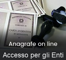 anagrafe on line